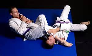 Jiu jitsu arm bars - good for MMA wrestling matches and holding down dolphins
